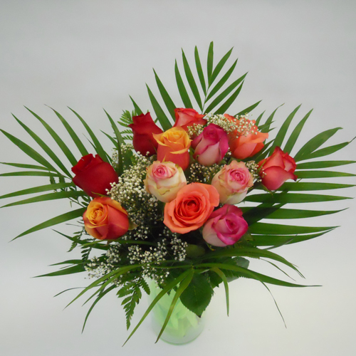 12 Roses Colorées