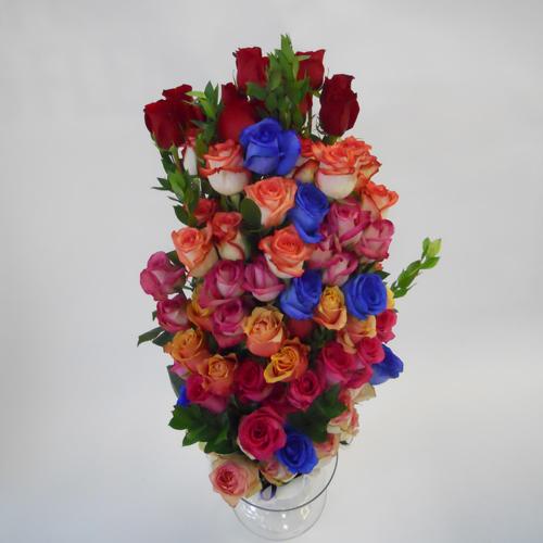 Fête de roses
