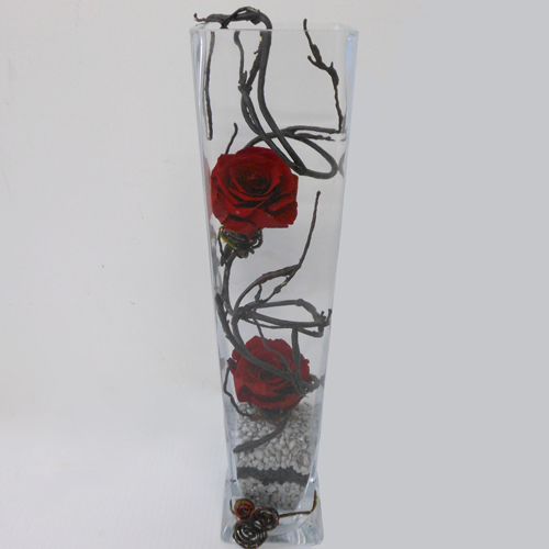 Roses-Eternelles