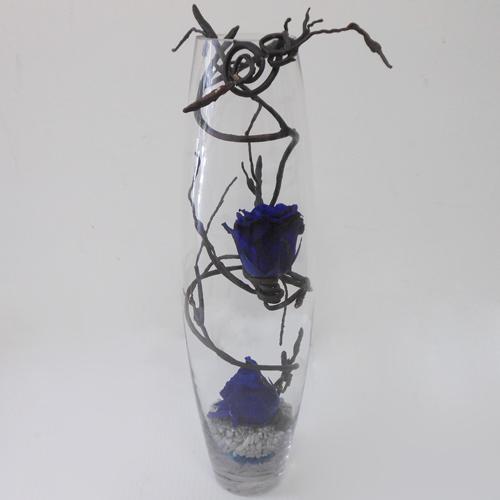 Roses-Eternelles-Bleues