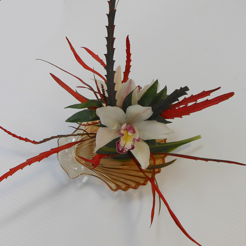 Sushi - Orchid